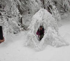 V snežnem objemu