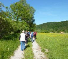 Ob slapu Kobiljega curka in spoznavanje mesojedih rastlin Mišje doline - 29. maj.2011