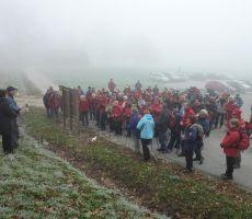 29. Martinov pohod na Bizeljskem, 13. november 2011