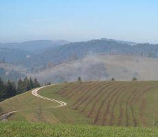 PO LOGAŠKI PLANINSKI POTI: HOTEDRŠICA - MEDVEDJE BRDO - ROVTE, 20. november 2011