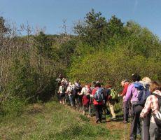 TRSTELJ, 643 m - Skupni izlet s PS PT Nova Gorica in PD PT Celje- 27. april 2012