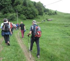 popoldan smo se odpravilil še na Črvov vrh, najvišji vrh Šentviške planote
