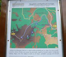 6. tradicionalni pohod z botanikom na Kopo (1.360 m) in vzpon na Porezen (1630 m), 23. junij 2012