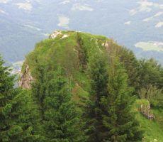vrh Kope (po Cerkljansko Kapa)