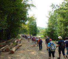 Po Trški poti nad Poljansko dolino v Beli Krajini, četrtek, 16. avgust 2012