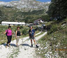 nekateri pa so šli na planino kar po cesti