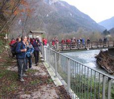 in ob bregu kar nekaj časa korakaki proti stezi, ki vodi do vasi Arbeč