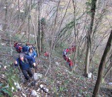 gozdna steza do Arbeča