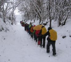 Prednovoletno srečanje v Stahovici - sobota, 8. december 2012