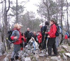 drugi vrh S553m visoki sv. Danijel (Štanjel)