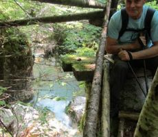 ob strugi potoka
