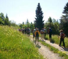 Po obrobju nad Gornjesavsko dolino: Kranjska Gora–Srednji vrh–Log-Vršič - četrtek, 20. junij 2013