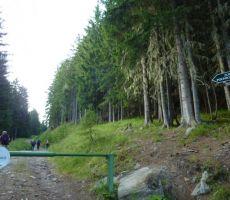 POLINIK, 2784 m   Kreuzeckgruppe (Avstrija) - sobota, 20. julij 2013