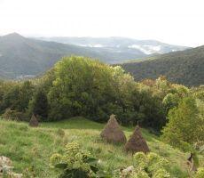 proti Gorenji vasi, kjer so pod vasjo kope sena...
