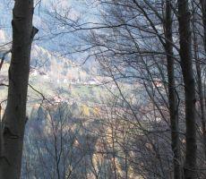 med drevjem se nam prikaže vasica Bača nad Podbrdom...