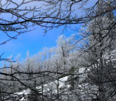 spremljali so jih lepi zimski prizori...