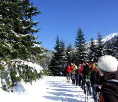 Planinska šola varnejšega gibanja v gorskem svetu: Ptičji vrh (1550 m) - nedelja, 23. februar 2014