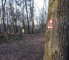 Planinske poti so še vedno slabo prehodne - marec 2014