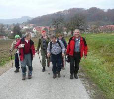 Martinovanje na Bizeljskem 2009