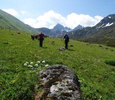 Po cvetočih poljanah na 3000 m