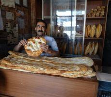 Kruh v vseh oblikah
