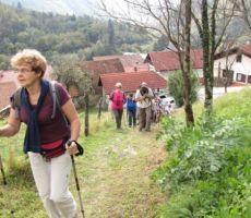 in še malo vzpona do vrha vasi na Koritnici...