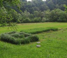 ki je lepo vnesena v okoliške travnike