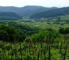 pogled v dolino...