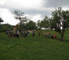 sadnega drevja je zelo veliko - travniški sadovnjak...