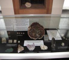 v Aškerčevi hiši domuje zbirka mineralov