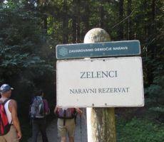 Zelenci - Planica - Tamar - Vršič -   četrtek, 13. avgust 2015