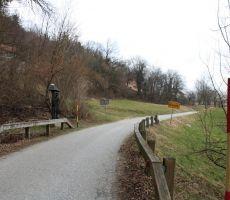 Ob poti je mnogo lesenih skulptur