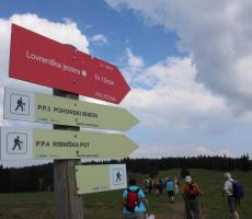 Rogla in Lovrenška jezera(1520m)