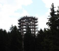 Nov stolp nad krošnjami