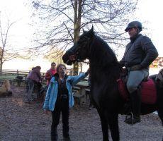 Obisk konjenice