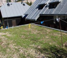 Zelena streha shrambe