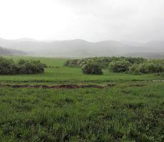 Palško jezero brez vode
