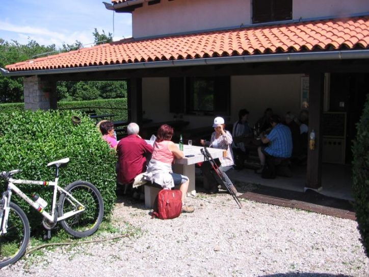 LIPICA, KOKOŠ, BAZOVICA, 29.05.2011