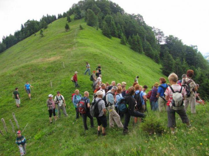 KOPA 1370m, POREZEN 1632m, 23.06.2012, skupaj s PD PT Ljubljana